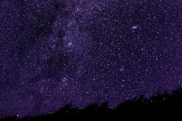 A field of stars